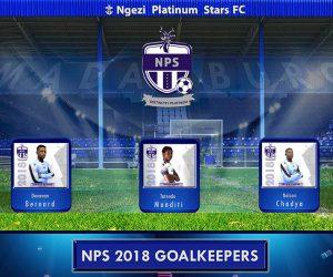 Ngezi platinum goalkeepers