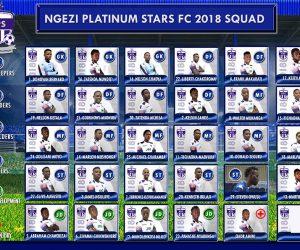 ngezi platinum 2018 team